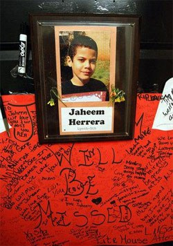 anti gay bullying stereotypes and suicides In recent years we've seen a tragic number of gay teens,ending their own lives  after enduring anti-gay bullying eighteen-year-old tyler clementi, 15-year-old.