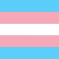 2000px-Transgender_Pride_flag
