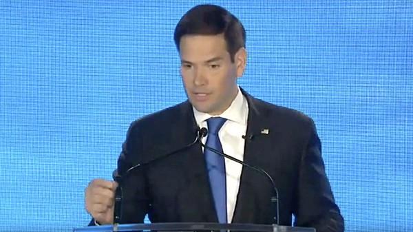 Marco Rubio rigged