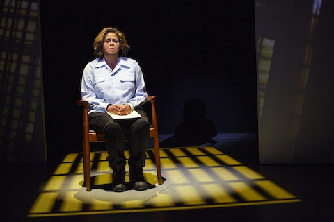 """Anna Deavere Smith in """"Notes from the Field"""""""