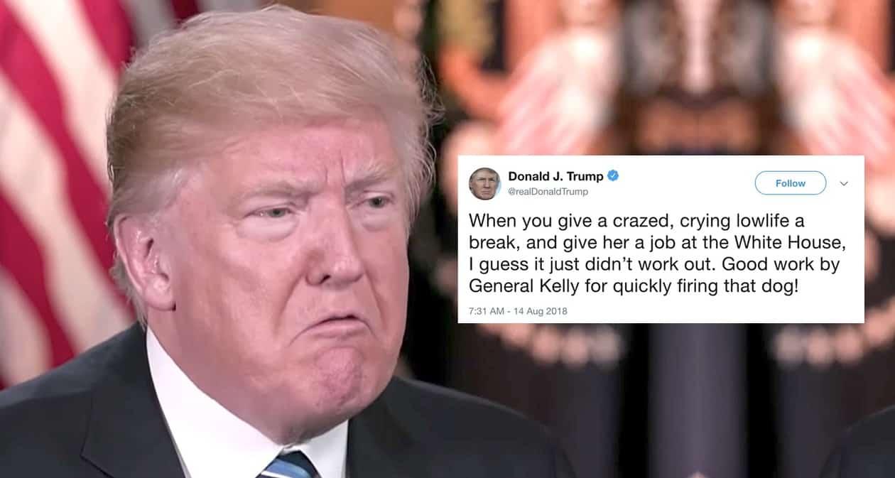 firing that dog trump