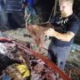 Marine Biologists Pull 88 Pounds of Plastic from Whale's Stomach: WATCH