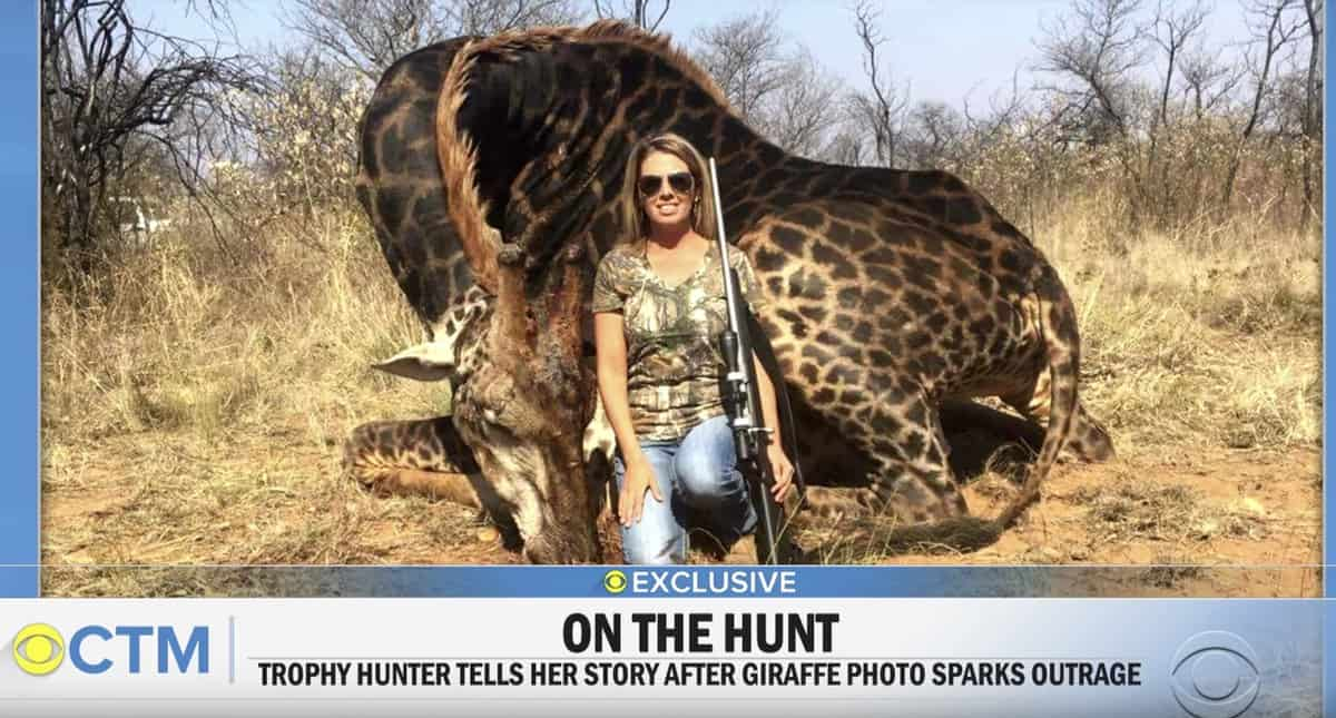 Tess Talley game trophy hunter