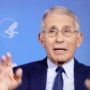 Dr. Anthony Fauci: U.S. Will See 'Millions of Cases' of Coronavirus and Between 100,000 and 200,000 Deaths — WATCH