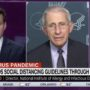 Dr. Anthony Fauci: 'We Argued Strongly' with Trump to Extend the Social Distancing Guidelines Another 30 Days — WATCH