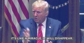 Trump pandumbic