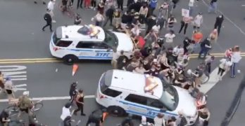 nypd protests