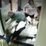 Couple Arrested After Brutal Assault on Black Worker at Connecticut Quality Inn: WATCH