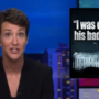 'Golden Showers in a Sex Club in Vegas': Rachel Maddow Reads from Michael Cohen's Tell-All Book on Donald Trump (WATCH)