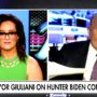 Rudy Giuliani Blows a Gasket at FOX Anchor Grilling Over Hunter Biden, Borat: 'You Better Apologize for That! … You're Asserting That I'm a Criminal!' — WATCH