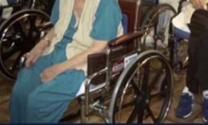 wheelchair trump