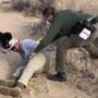 Native American Marine Vet Tased by Park Ranger While Walking Dog at National Monument: WATCH