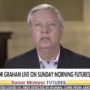 Lindsey Graham Tells Trump to 'Keep Your Movement Alive,' Urges Him to Resist Pardoning the Rioters: WATCH