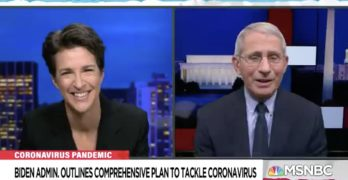 Rachel Maddow Anthony Fauci