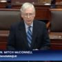 Mitch McConnell: Insurrectionists Were Provoked by Trump  — WATCH