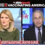 Dr. Anthony Fauci Pushes Back on Trump Tweet Claiming U.S. COVID Death Toll is 'Fake News' — WATCH