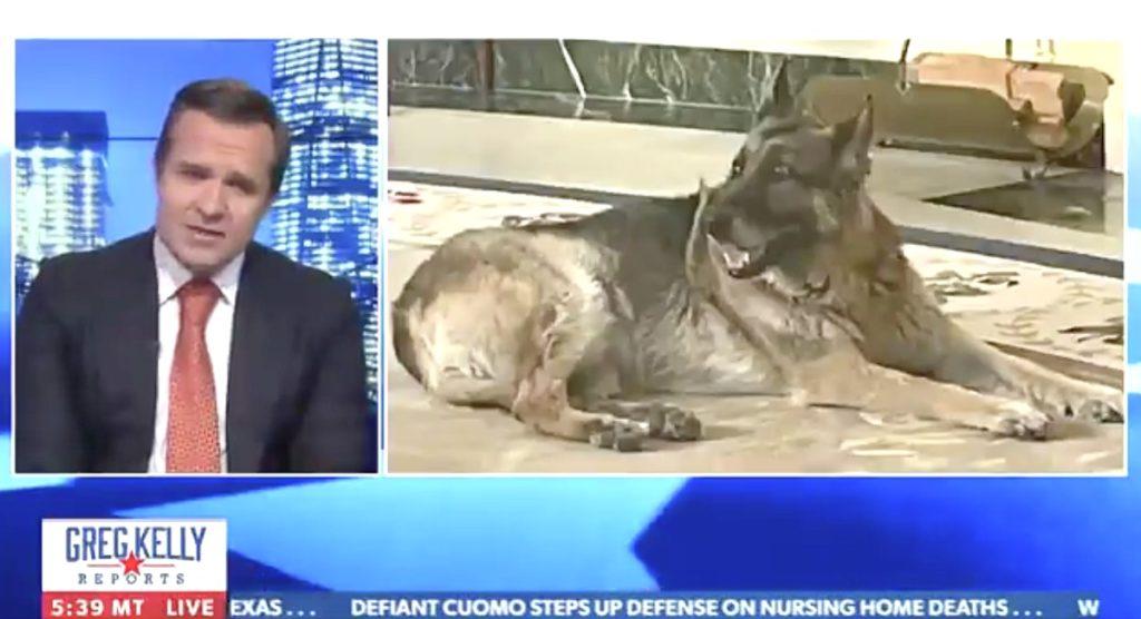 Greg Kelly Biden dog