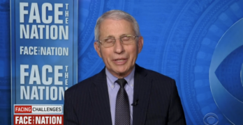 Fauci Faces Nation