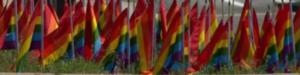 Colorado Pride Flag Display Defaced Multiple Times; Confederate Flag Left at Scene